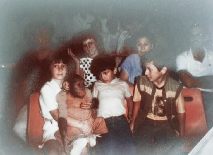 familie_zirkus