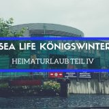 sea-life-koenigswinter