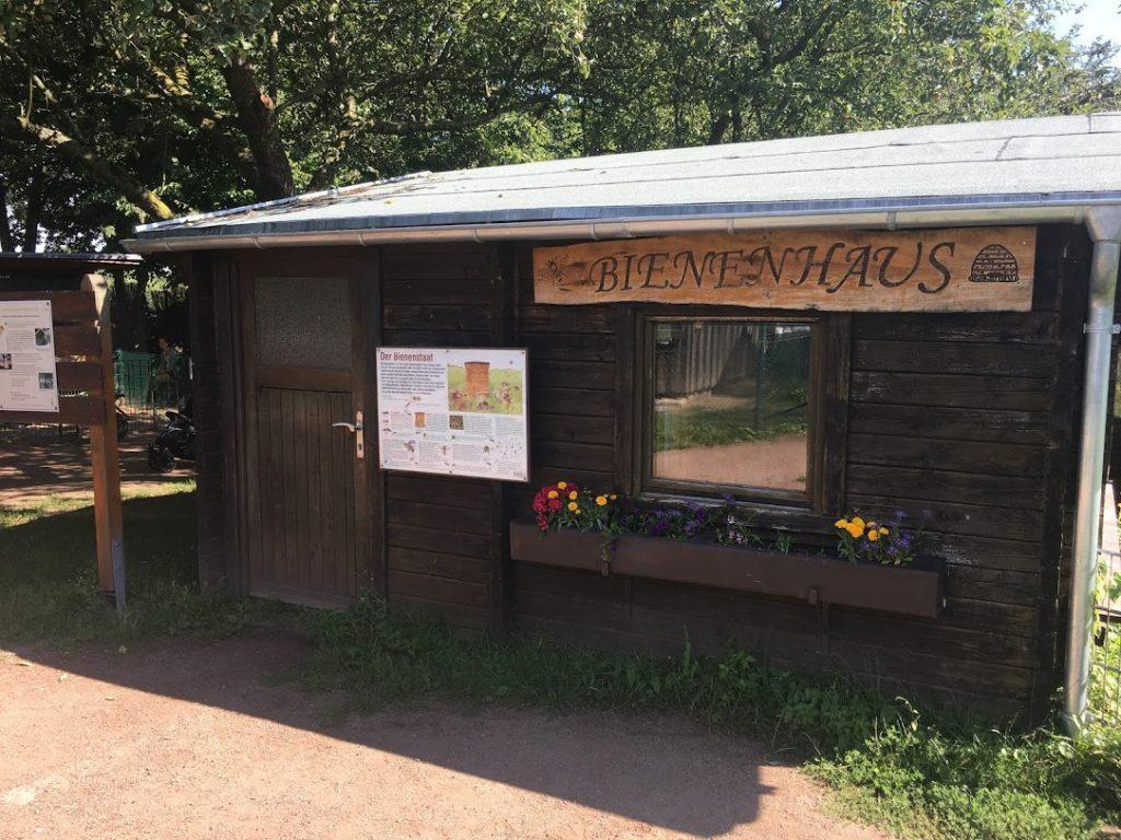 Am Bienenhaus habe ich gelernt, dass noch Heim-Imker gesucht werden!